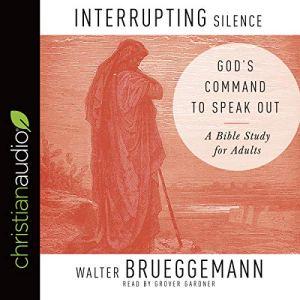 Interrupting Silence audiobook cover art