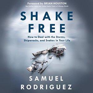 Shake Free audiobook cover art
