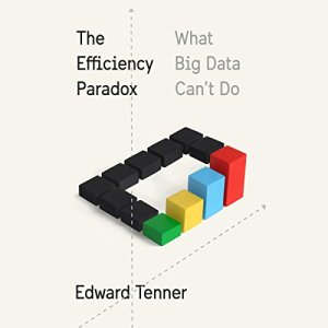 The Efficiency Paradox audiobook cover art