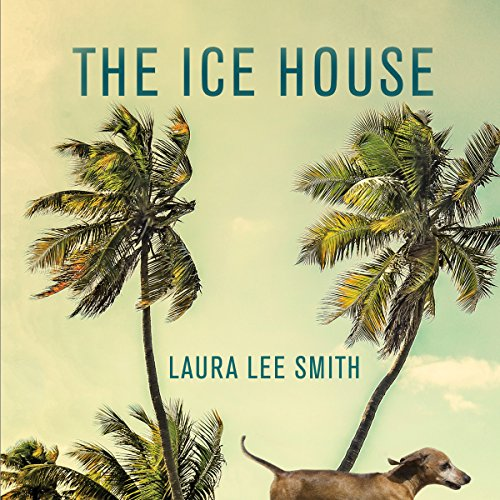 The Ice House audiobook cover art