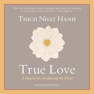 True Love audiobook cover art