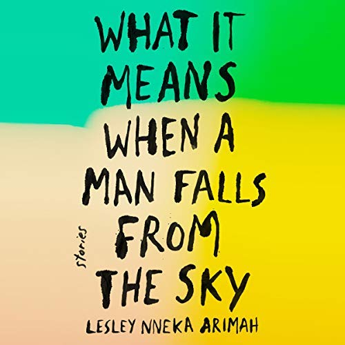 What It Means When a Man Falls from the Sky audiobook cover art