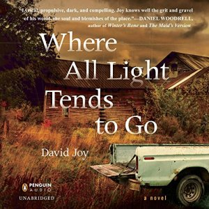 Where All Light Tends to Go audiobook cover art