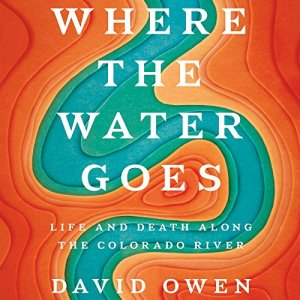 Where the Water Goes audiobook cover art