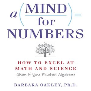 A Mind for Numbers audiobook cover art