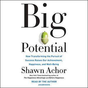 Big Potential audiobook cover art