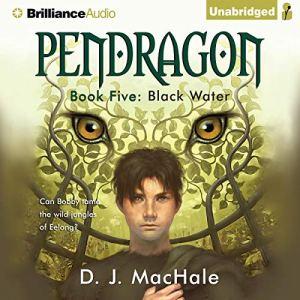 Black Water audiobook cover art