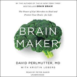 Brain Maker audiobook cover art
