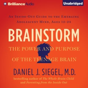 Brainstorm audiobook cover art
