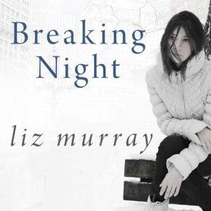 Breaking Night audiobook cover art