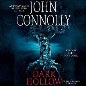 Dark Hollow audiobook cover art