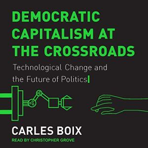 Democratic Capitalism at the Crossroads audiobook cover art
