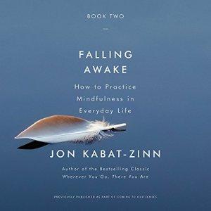 Falling Awake audiobook cover art
