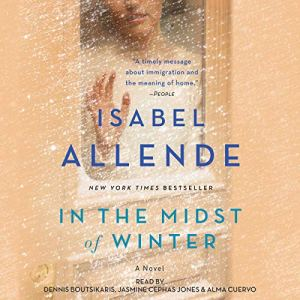 In the Midst of Winter audiobook cover art