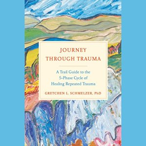 Journey Through Trauma audiobook cover art