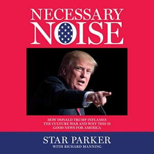 Necessary Noise audiobook cover art