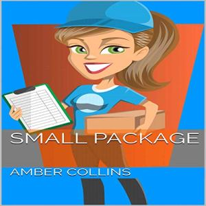 Small Package audiobook cover art