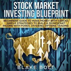 Stock Market Investing Blueprint: Beginners Guide to Make Money with Stocks audiobook cover art