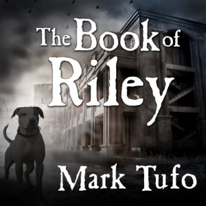 The Book of Riley audiobook cover art