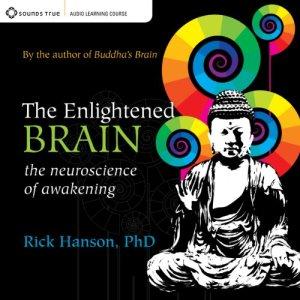 The Enlightened Brain audiobook cover art