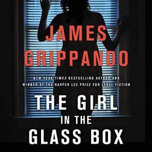 The Girl in the Glass Box audiobook cover art