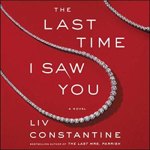 The Last Time I Saw You audiobook cover art