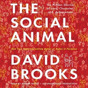 The Social Animal audiobook cover art