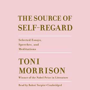 The Source of Self-Regard audiobook cover art