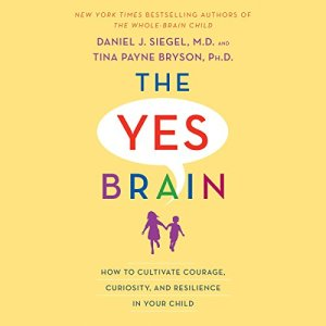 The Yes Brain audiobook cover art