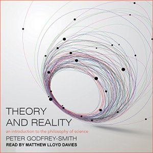 Theory and Reality audiobook cover art
