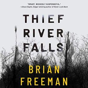 Thief River Falls audiobook cover art