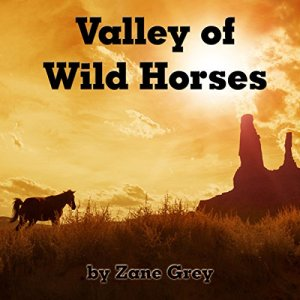 Valley of Wild Horses audiobook cover art