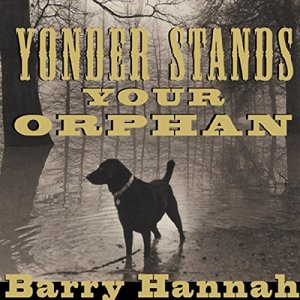 Yonder Stands Your Orphan audiobook cover art