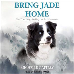 Bring Jade Home Audiobook By Michelle Caffrey cover art