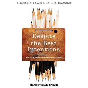 Despite the Best Intentions Audiobook By Amanda E. Lewis, John B. Diamond cover art