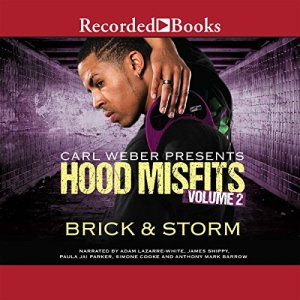 Hood Misfits Volume 2 Audiobook By Brick, Storm cover art