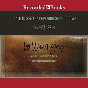 I Hate To See That Evening Sun Go Down Audiobook By William Gay cover art