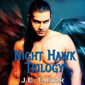 Night Hawk Trilogy Audiobook By J.E. Taylor cover art