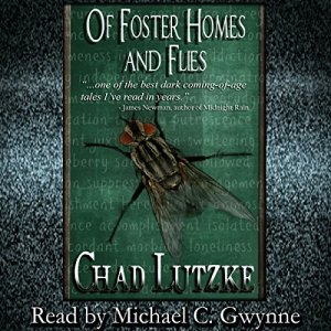 Of Foster Homes and Flies Audiobook By Chad Lutzke cover art