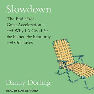 Slowdown Audiobook By Danny Dorling cover art