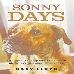 Sonny Days Audiobook By Gary Lloyd cover art