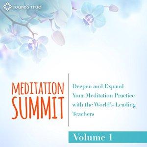 The Meditation Summit: Volume 1 Audiobook By Reginald A. Ray Ph.D., Snatam Kaur, Sharon Salzberg, Rick Hanson Ph.D., Tsultrim Allione, Anh-Huong Nguyen, Loch Kelly, Saki Santorelli, Anodea Judith, Jack Kornfield Ph.D. cover art