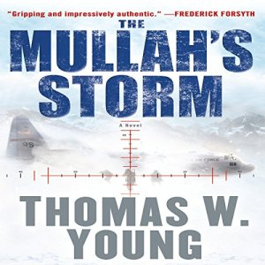 The Mullah's Storm Audiobook By Thomas W. Young cover art
