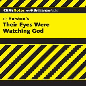 Their Eyes Were Watching God: CliffsNotes Audiobook By Megan E. Ash cover art