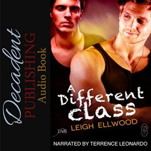 A Different Class Audiobook By Leigh Ellwood cover art
