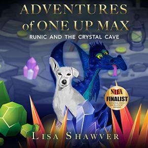 Adventures of One Up Max Audiobook By Lisa Shawver cover art