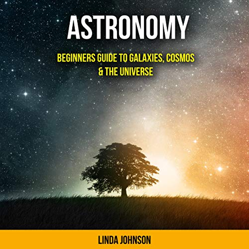Astronomy: Beginners Guide to Galaxies, Cosmos & the Universe Audiobook By Linda J Johnson cover art