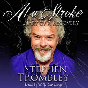 At a Stroke Audiobook By Stephen Trombley cover art