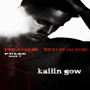 Blood Burned Audiobook By Kailin Gow cover art