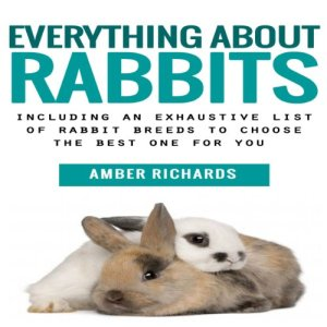 Everything About Rabbits Audiobook By Amber Richards cover art